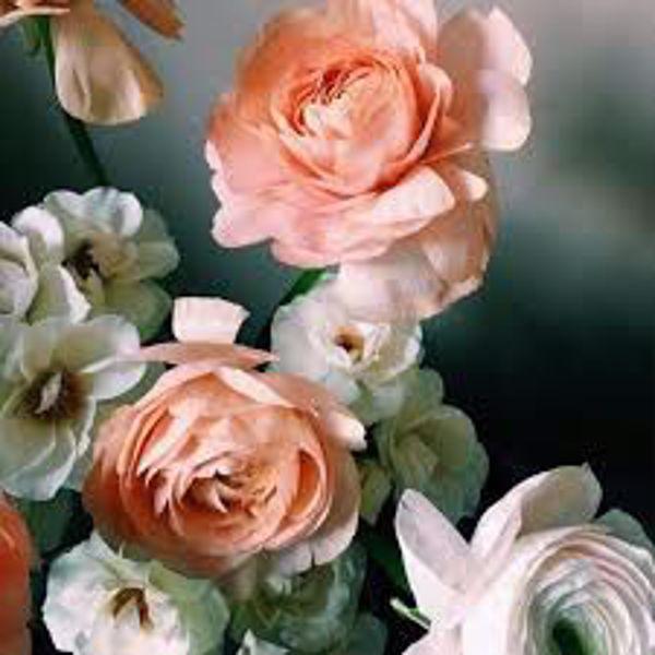 Immagine per la categoria Addobbi floreali